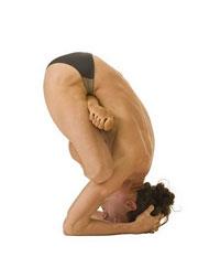 Ширша Йога Мудрасана – Поза Печати Йоги на голове