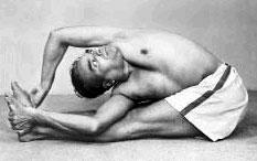 Паривритта Пашчимоттанасана - Поза скрученного бокового угла